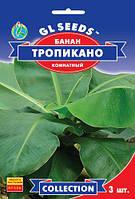 Банан Тропикано многолетний комнатный плодовое растение вырастает до 2-х метров, упаковка 3 шт