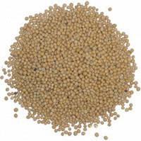 Семена Горчицы белой на сидерат зеленое удобрение кормовая и медоносная культура, упаковка от 1 кг