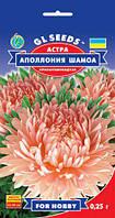 Астра Аполлония Шамоа роскошная хризантемовидная срезочный сорт с крупными соцветиями, упаковка 0,25 г