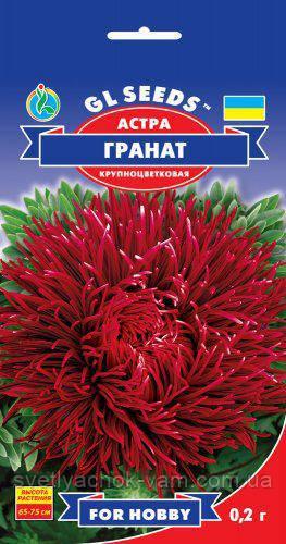Астра Гранат очаровательная игольчатая с гигантскими соцветиями великолепна для срезки, упаковка 0,2 г