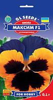 Виола Максим F1 гибрид с экстравагантной окраской крупноцветковый обильно цветущий, упаковка 0,1 г