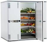 Холодильная камера для хранения рыбы, мяса и т.д., фото 3