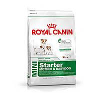 Royal Canin сухой корм для щенков мелких размеров до 2-х месяцев, беременных и кормящих сук - 1 кг