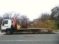 Перевозки деревьев