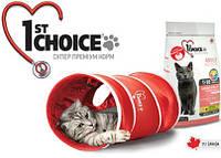 ПОДАРОК для кошек/котов - фирменный тоннель
