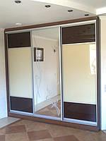 Двери-купе с зеркалом и стеклом, фото 1