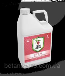 Протравитель семян Гринфорт КТ 170, ТН (аналог Витавакс),5л.