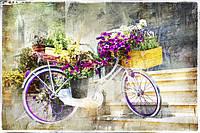 Фотообои Велосипед с цветами