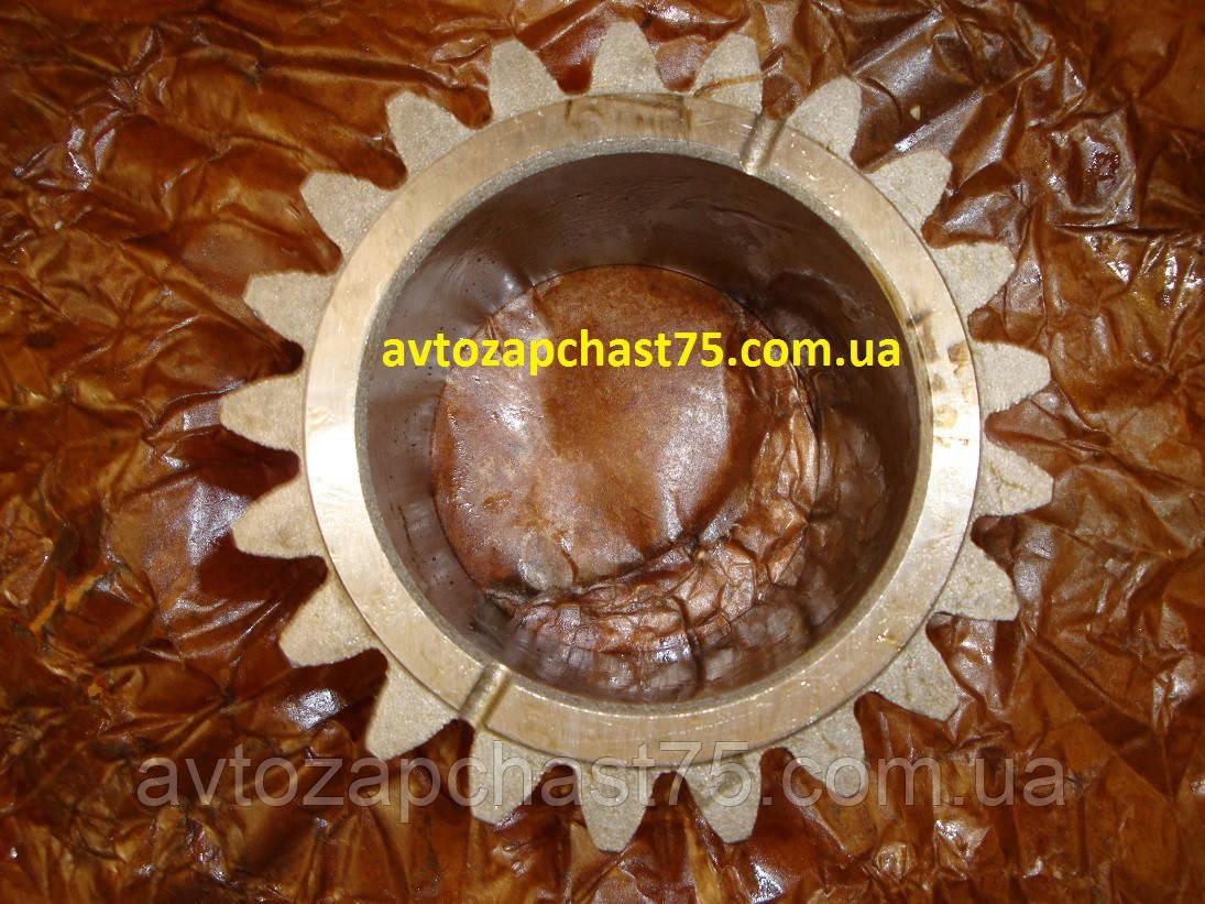 Шестерня вала первичного МТЗ 1025, зуб=21 (производитель Минский тракторный завод, Беларусь)