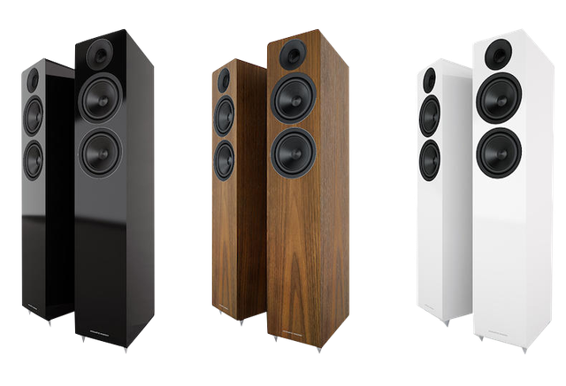 Acoustic Energy AE 307 Walnut