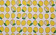 Сатин (бавовняна тканина) на білому тлі лимони, фото 2
