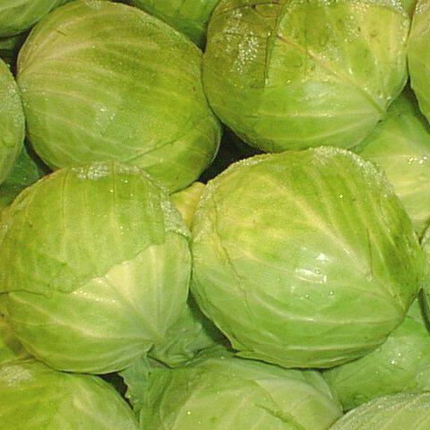 Семена капусты б/к Коронет F1 (1000 сем.)