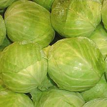 Семена капусты б/к Коронет F1 (1000 сем.) Sakata
