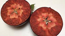 Apple проти яблук: на порозі дизайнерської фруктової ери