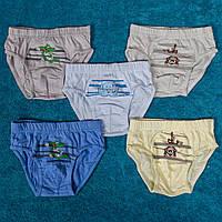 Детские плавки для мальчика до 1 года. Турция. Donella 7671WAH 0-1. В упаковке 5 шт.