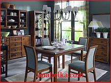 Мебель для столовой ИНДИАНА  (BRW-Украина)