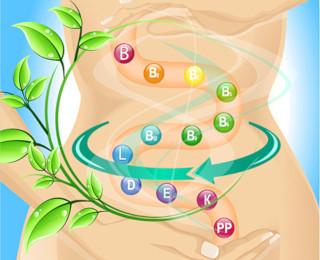 Пробиотики помогают витаминам усваиваться правильно