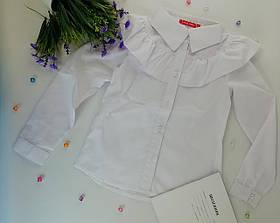 Школьная форма для девочек Рубашка №6 белый Sofia Shelest