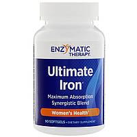 Enzymatic Therapy, Лучшее железо, здоровье женщин, 90 мягких таблеток