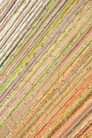 Радуга дождь № 3+14+19+203 ( оранжевый, бежевый, оливковый, молочный ), фото 1