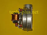 Вентилятор 8716143201 Buderus Logomax U022-24K, U052-24, U052-24K, U052-28, U052-28K, фото 4