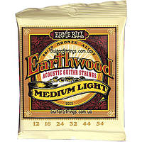 Струны Ernie Ball 2003 Earthwood Bronze Alloy Medium Light 12-54