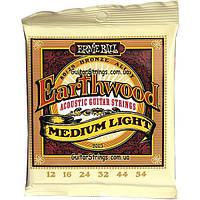 Струны Ernie Ball 2003 EarthwoodBronze Alloy Medium Light 12-54