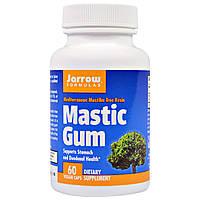 Смола мастикового дерева, 500 mg, Jarrow Formulas, 60 капсул