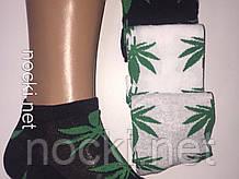 """Шкарпетки чоловічі """"коноплі"""" короткі"""