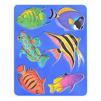 Трафарет ''Аквариумные рыбки'' 10С531-08