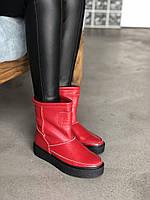 Угги из красной натуральной кожи флотар 419-33 (идеал), фото 1