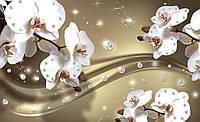 Фотообои флизелиновые 3D цветы 300х210 см : Орхидеи и множество бриллиантов (2314CN)