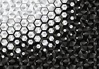Фотообои 3D 368х254 см Черно белые шестиугольники (10684CN)