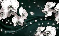 Фотообои 3D цветы (флизелин 312х219, бумага 368x254) Орхидеи и драгоценные камни (2310CN)