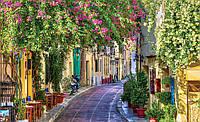 Фотообои 3D город (флизелиновые, бумага) 368x254 см Улица с цветами (1996.20787)