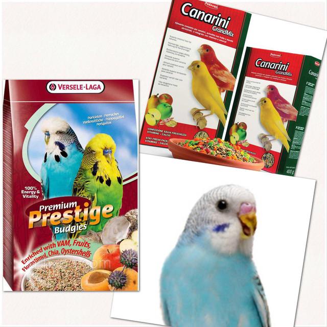 Корм для волнистых попугаев, канареек и амадин.