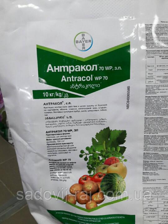 Фунгіцид Антракол 10 кг Bayer для яблуні, винограду, цибулі, томатів, картоплі від захворювань