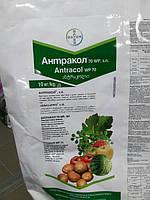 Фунгицид Антракол 10 кг Bayer Байер Германия
