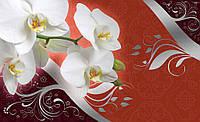 Фотообои 3D цветы 368x254 см Орхидеи на текстильном фоне (1821CN)