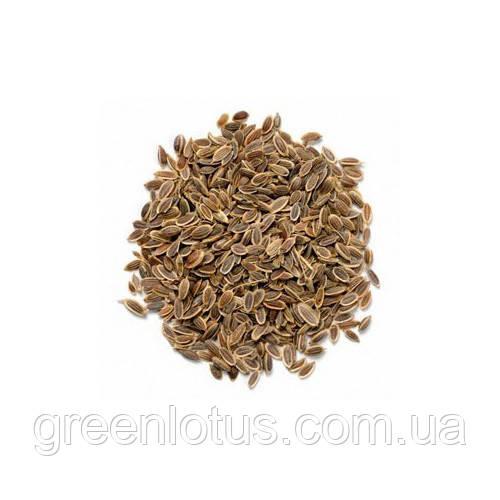 Семена укропа 0,5 кг.
