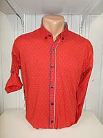 Рубашка мужская YG  длинный-короткий рукав, заклепки, мелкий узор №01,08,01 001\ купить рубашку