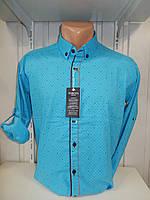 Рубашка мужская YG  длинный-короткий рукав, заклепки, мелкий узор №01,08,01 004\ купить рубашку