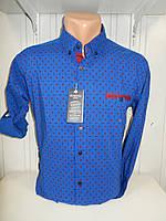 Рубашка мужская YG  длинный-короткий рукав, заклепки, мелкий узор №01,08,02 003\ купить рубашку