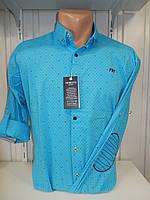 Рубашка мужская YG  длинный-короткий рукав, заклепки, налокотники, мелкий узор №01,08,03 003\ купить рубашку