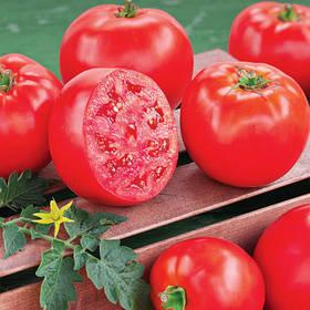 Насіння томатів - помідорів Семена томатов - помидоров
