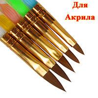 Новое Поступление: Набор Конусных Кистей для Акрила, с Прозрачной Ручкой. Код 1396. Цена: 78,40 грн./набор