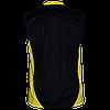 Волейбольная майка Triumph Titar черно/желтая, фото 2