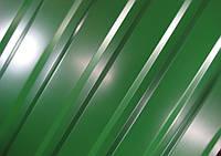 Профнастил ТП-20, полиэстр, фото 1