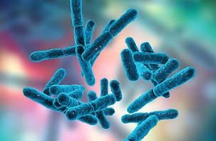 Что такое пробиотики и когда они нужны