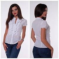 8163312c211 Блузка школьная с коротким рукавом в Украине. Сравнить цены
